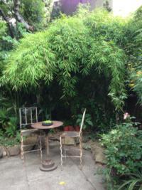 Sitting area in the Organic Mechanics garden